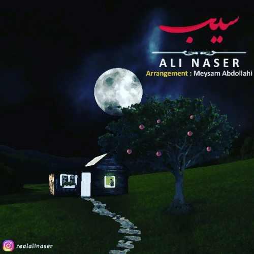 دانلود آهنگ جدید علیرضا ناصر بنام سیب