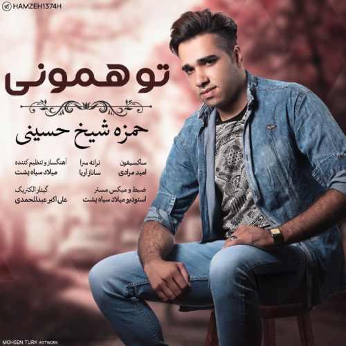 دانلود آهنگ جدید حمزه شیخ حسینی بنام تو همونی