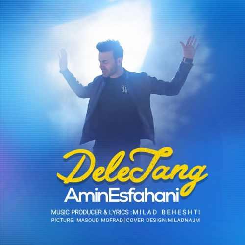 دانلود آهنگ جدید امین اصفهانی بنام دل تنگ